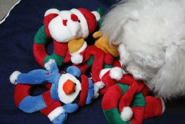 2006.11.17-d.jpg