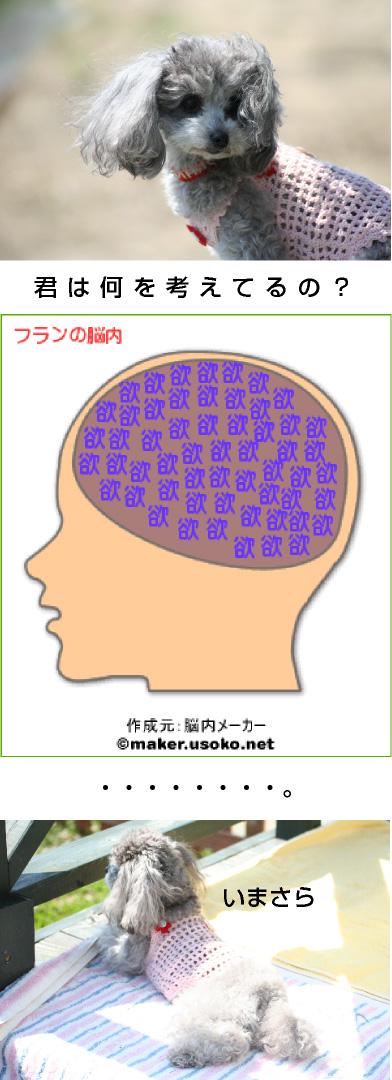 20070714023351.jpg