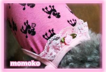momoko0714c.jpg