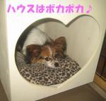 2007.10.16Patty.jpg