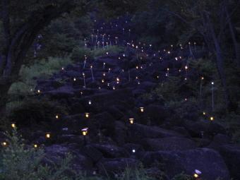 鍋倉渓ライトアップ
