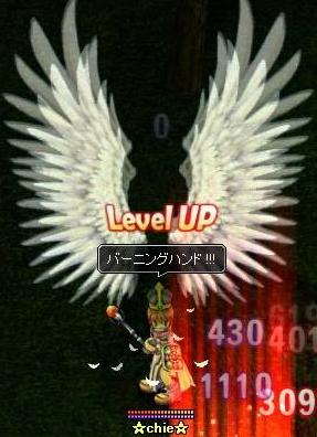 20070324115649.jpg
