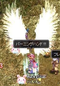 20071101215325.jpg