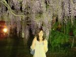 藤の花と響子