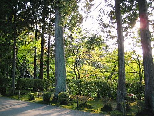 京都 曼殊院