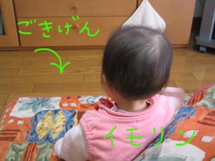 20060210151307.jpg