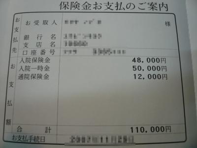 P1020883.jpg