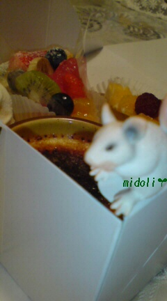 アラカン+ネズミちゃん2