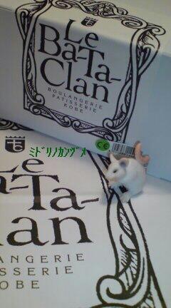 アラカン+ネズミちゃん