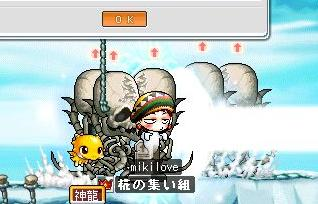 koijiko.jpg