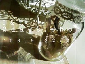 20060922161508.jpg