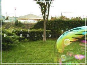 20061008075616.jpg