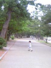 20070523012152.jpg