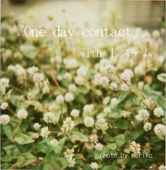 onedaycontact_0.jpg