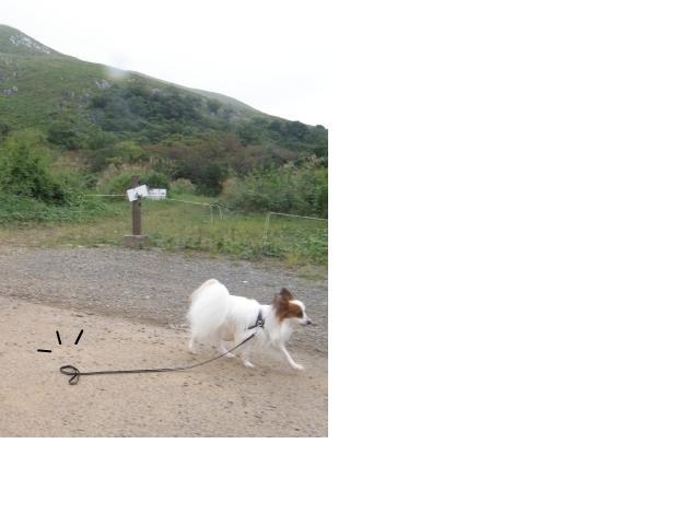 snap_milk522_200992172422.jpg