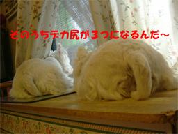 20050802143001.jpg