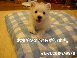 20050812133236.jpg