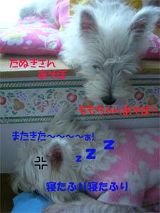 20051019143457.jpg