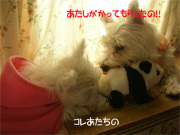 20051025123709.jpg