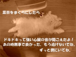 20051124131127.jpg