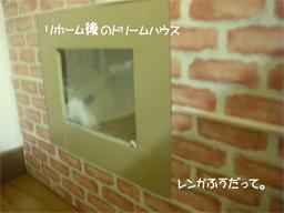 20051130213752.jpg