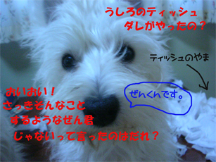 20051201165653.jpg