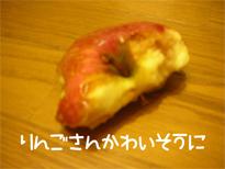 20051203183549.jpg