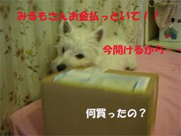 20051216204921.jpg