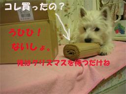20051216204944.jpg