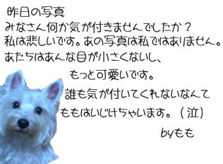 20060307210807.jpg