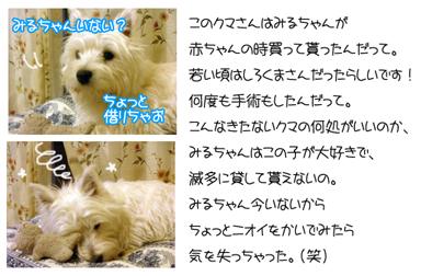 20060326204632.jpg