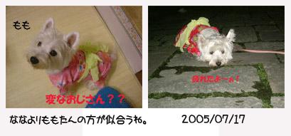 20060727093407.jpg