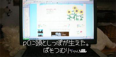 20060731083412.jpg