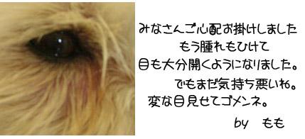 20060815180526.jpg
