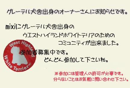 20061018194205.jpg