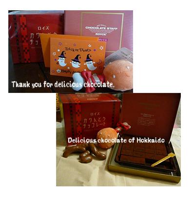 chocolate-Hokkaido.jpg