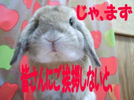 あきら社長 5