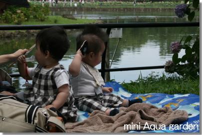 20080719_6.jpg