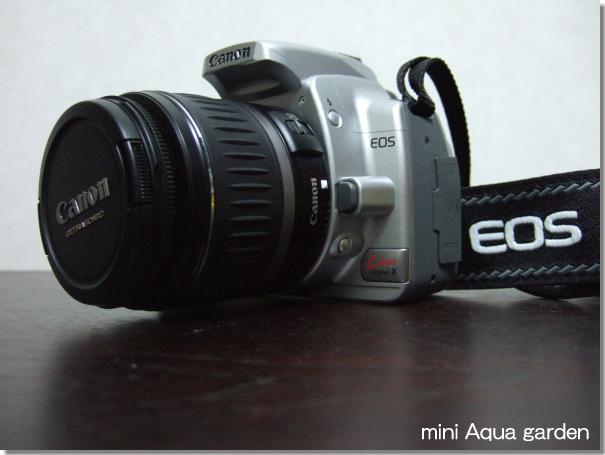 eos001.jpg