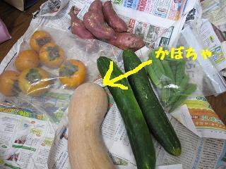 料理・05-1