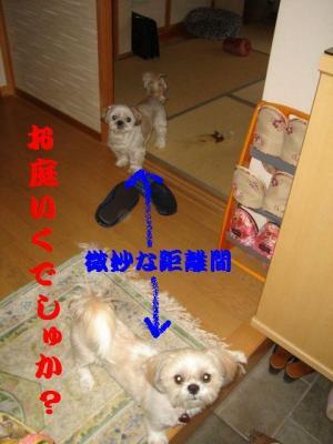 20070507201429.jpg