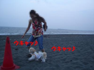 20070806214450.jpg
