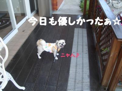 20070818014155.jpg