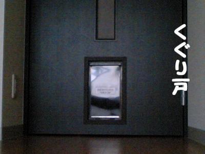 20071020115244.jpg