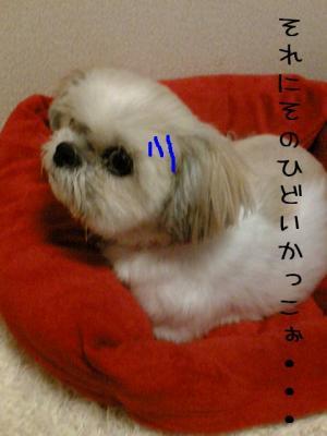 20071109220035.jpg