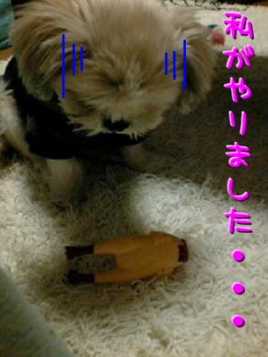080226_2005~01