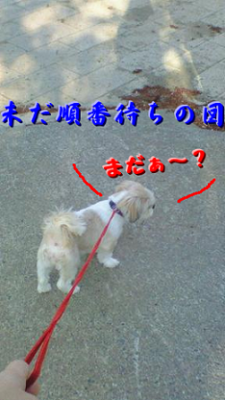 200805060652000001.png