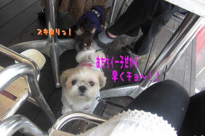 CIMG0048.JPG④