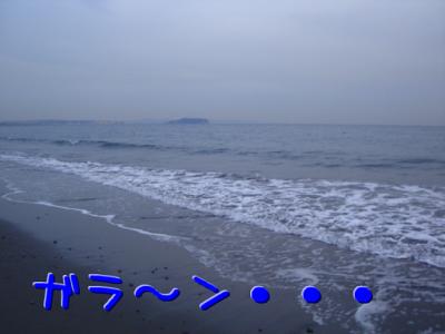 DSC04066.png