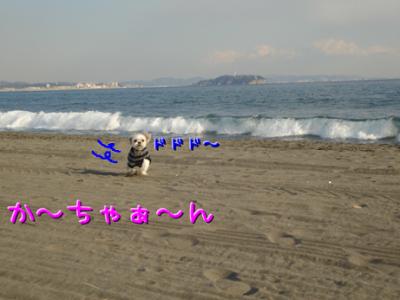 DSC04140.png